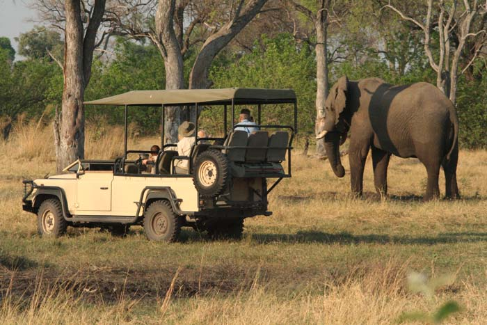Photographic safaris to Africa, led by Lindsay Scott and Brian McPhun
